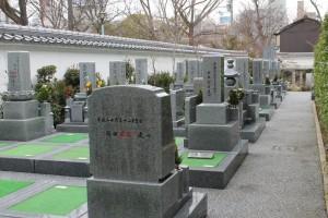 空き墓地2