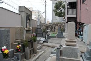空き墓地3